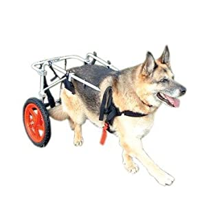Best Friend Mobility Dog Wheelchair, X-Large from Best Friend Mobility
