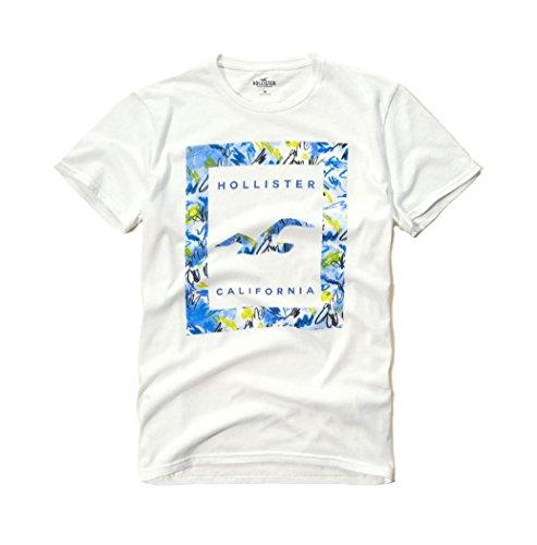 hollister-mens-graphic-logo-t-shirt-medium-white-sig