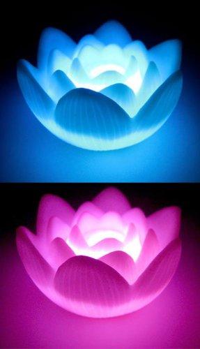 Lotus Led Lights