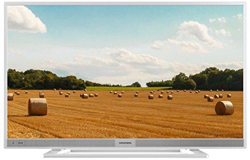 22 VLE 5520 SG 55 cm (22 Zoll) Fernseher (Full HD, Triple Tuner) silber