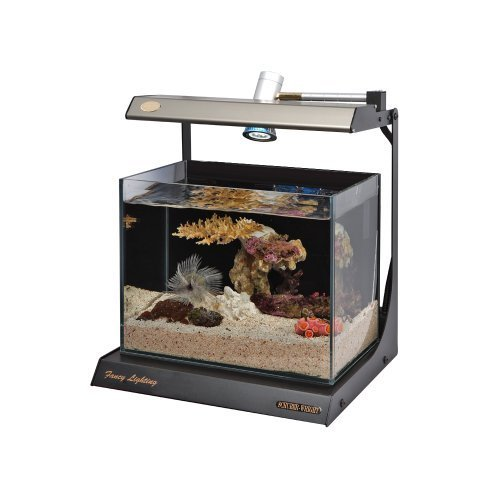 Schuber Wright Fancy Star Day Rimless Aquarium, 4-Gallon (Ada Clear Super compare prices)