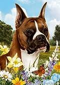 Boxer Fawn Cropped Dog - Tamara Burnett Summer Flowers Outdoor Garden Flag 12'' x 17''