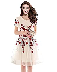 Sky Global Women's Semi Stitched Georgette Cream Dress With Red Flowers