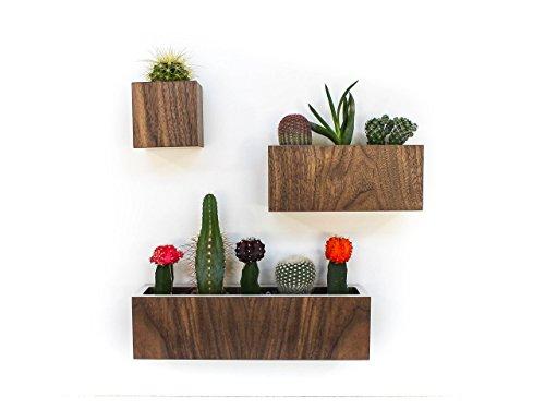 set-of-wall-hanging-walnut-planters-s-m-l-petite-walnut-colored-laminate-sizes-3-8-125-x-34-sq-no-pl