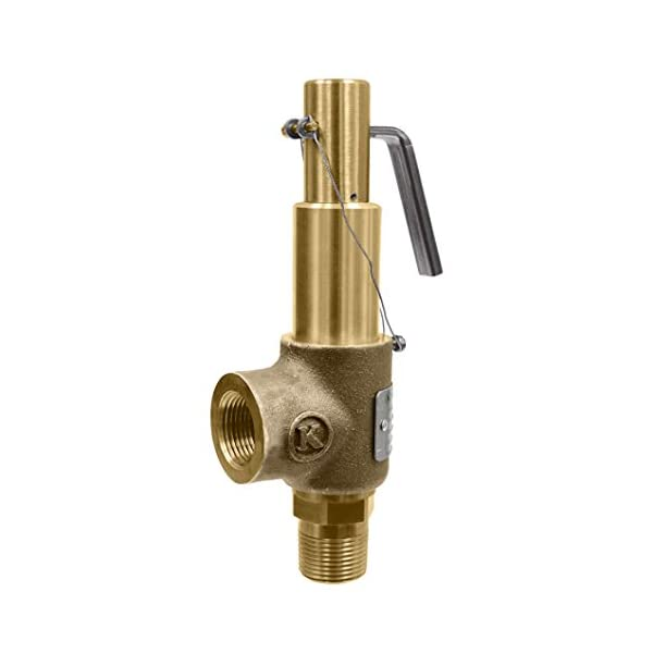 1//2 Inlet X 1 Outlet Open Lever Brass Body And Trim D Orifice Kingston Valves 710D46S1L1-250 Model 710 Safety Valve 250 Psi 1//2 Inlet X 1 Outlet Asme Section Viii Steam Silicone Disc