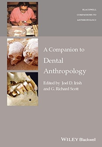 A Companion to Dental Anthropology (Wiley Blackwell Companions to Anthropology) PDF