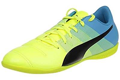 Puma evoPOWER 4.3 IT Jr kids soccer shoes 103565 01