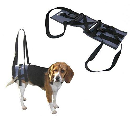 Supporto Veterinario Handy Canis - Imbragatura per cani con gravi problemi alle zampe posteriori (Large (68 cm circonferenza fascia))