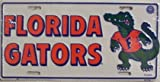 Florida Gators College License Plate