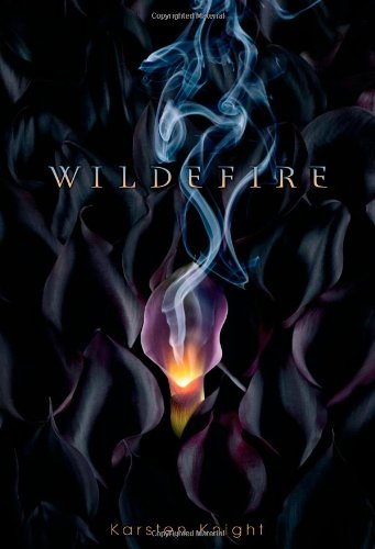 Cover of Wildefire