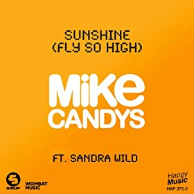 Sunshine (Fly So High) [2012 Radio Mix]