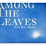 Among The Leaves Sun Kil Moon