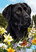 Black Labrador Retriever Dog - Tamara Burnett Summer Flowers Outdoor Garden Flag 12'' x 17''