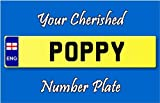 Personalised Registration Number Plate Keyring Poppy