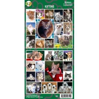 Kittens Sticker - Case Pack 24 SKU-PAS376324