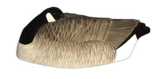 dakota-decoy-canada-sleeper-shell-flocked-12-pack-12210