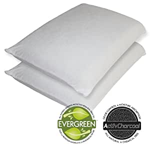 Sleep Master Memory Foam Traditional Pillows : Amazon.com: Sleep Master Memory Foam Traditional Pillow, Standard, 2-Pack: Home & Kitchen