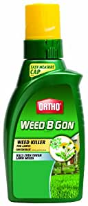 Ortho 0408020 Weed B Gon Weed Killer for Lawns Concentrate, 32-Ounce (Discontinued by Manufacturer)