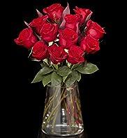 Autograph Dozen Freedom Roses