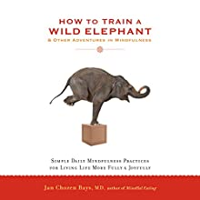 How to Train a Wild Elephant & Other Adventures in Mindfulness: Simple Daily Mindfulness Practices for Living Life More Fully & Joyfully (       UNABRIDGED) by Jan Chozen Bays, MD Narrated by Jan Chozen Bays, MD
