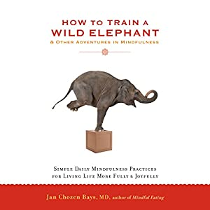 How to Train a Wild Elephant & Other Adventures in Mindfulness Audiobook