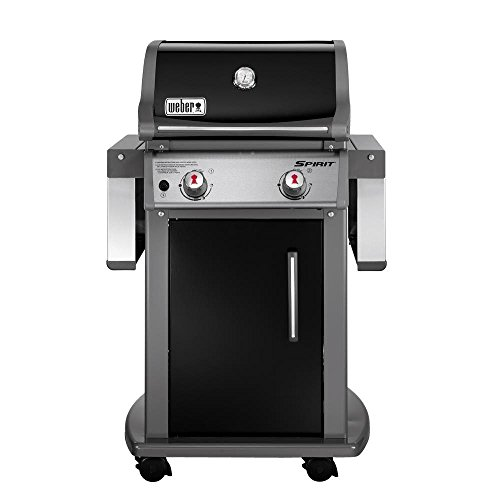 Spirit E-210 2-Burner Propane Gas Grill бухта эластичной ленты spirit fitness light e 07