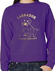 Labrador Dog Lover Sweatshirt Jumper In Gold Glitter Unisex Birthday Gift Size Small -XXL
