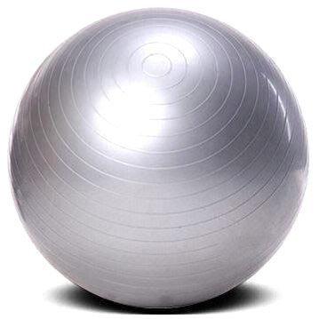 65cm Gym Ball with Pump