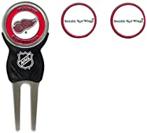 NHL Detroit Red Wings 3 Marker Sign Divot Pack