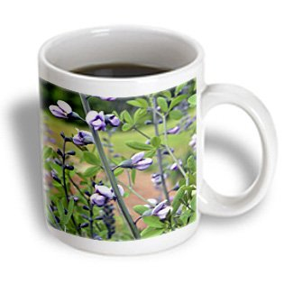 Whiteoak Photography Floral Prints - Slim Purple Flowers On Stalk - 15Oz Mug (Mug_51029_2)
