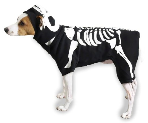 Casual Canine Cotton Glow Bones Dog Costume,