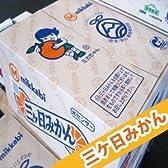 【糖度10度以上】ミカちゃんマークの「静岡:三ケ日みかん」 【優グレード】2Lサイズ 9kg