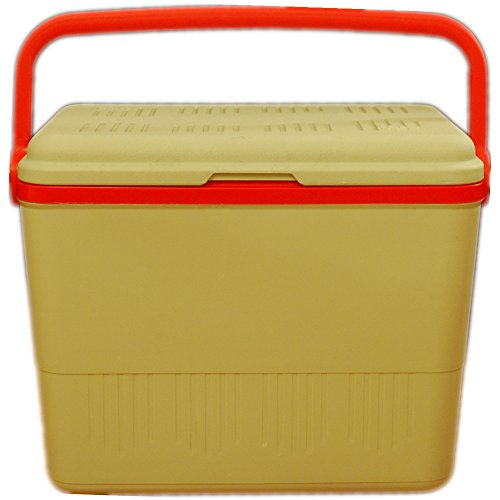 carrefourr-42l-extra-large-insulated-coolbox-icebox-cool-ice-box-cooler-with-handle-for-camping-picn