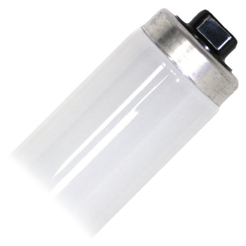 Philips 218198 - F48T12/CW/VHO Straight T12 Fluorescent