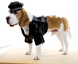 WMU 561859 Black Biker Dog Jacket and Hat Costume - Medium from WMU