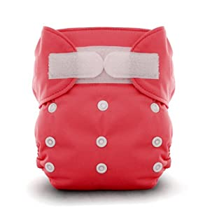 Thirsties Duo All in One Cloth Diaper, Rose, Size One (6-18 lbs)