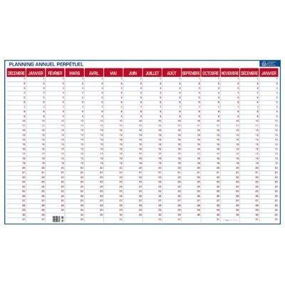 cbg-planning-annuel-perpetuel-effacable-a-sec-livre-avec-feutre-grille-de-14-mois-dim-l99-x-h60-cm