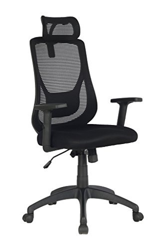 VIVA OFFICE Ergonomic Office Chair, High Back