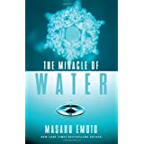 The Miracle of Water ~ Masaru Emoto
