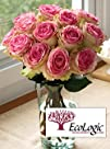 EcoLogic Crown Majesty Roses