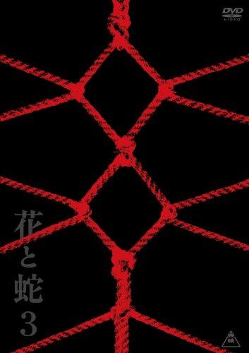 [小向美奈子 本宮泰風 小松崎真理 琴乃 睦五朗] 花と蛇3 特別版【DVD】