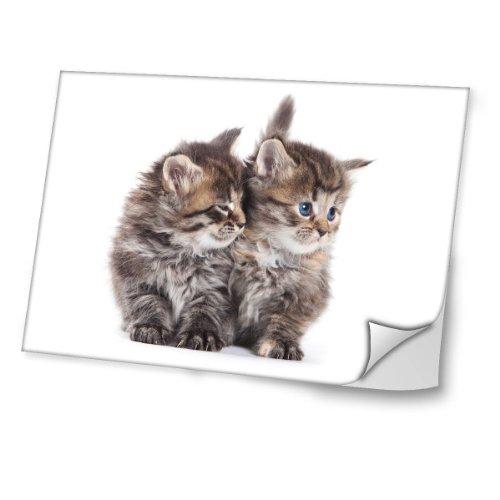 gatitos-diseno-mejor-pegatina-de-vinilo-protector-con-efecto-cuero-extraible-adhesivo-sticker-skin-d