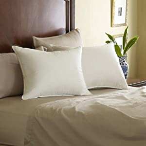 Euro Feather Pillow Size: Queen
