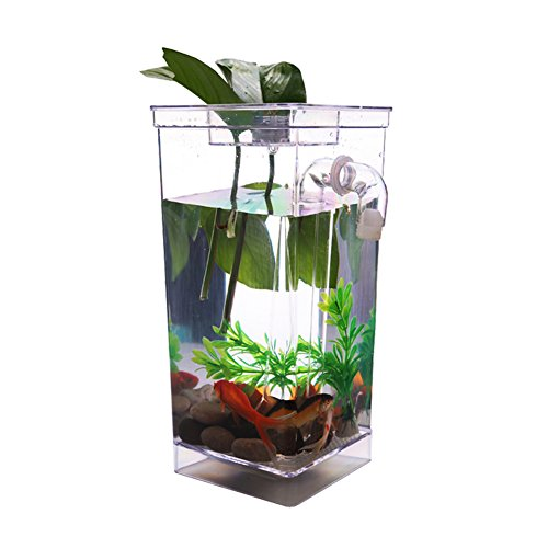 DTlife Aquarium Fish Tank Kit for Home and Office Decor (80 Gal Water Heater Stand compare prices)