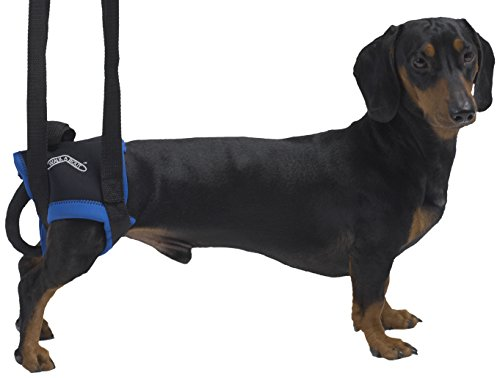 kruuse-hind-legs-walkabout-harness-x-large