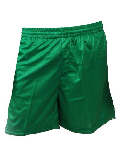 Peak Sport Europe, Pantaloni corti Uomo, TS32, Verde (green), L