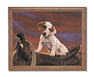 Western Cowboy Rodeo Saddle Rope Dog Animal Wall Picture Oak Framed Art Print