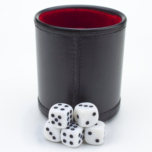 Felt Lined Professional Dice Cup w/ 5 Dice by Brybelly GDIC-303 289571842