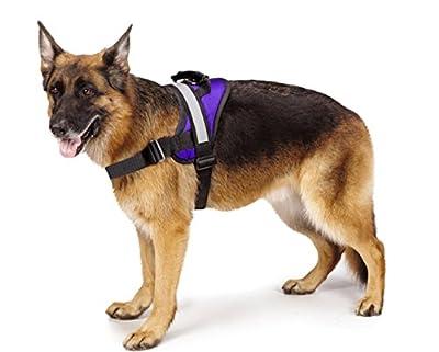 Big Dog Soft Reflective No Pull Harness