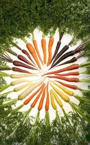 "Seeds and Things ""Rainbow Blend"" Carrot~seeds!300+ Seeds Pretty & Healthy!!"